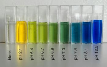Broomthymolblauw 5gr